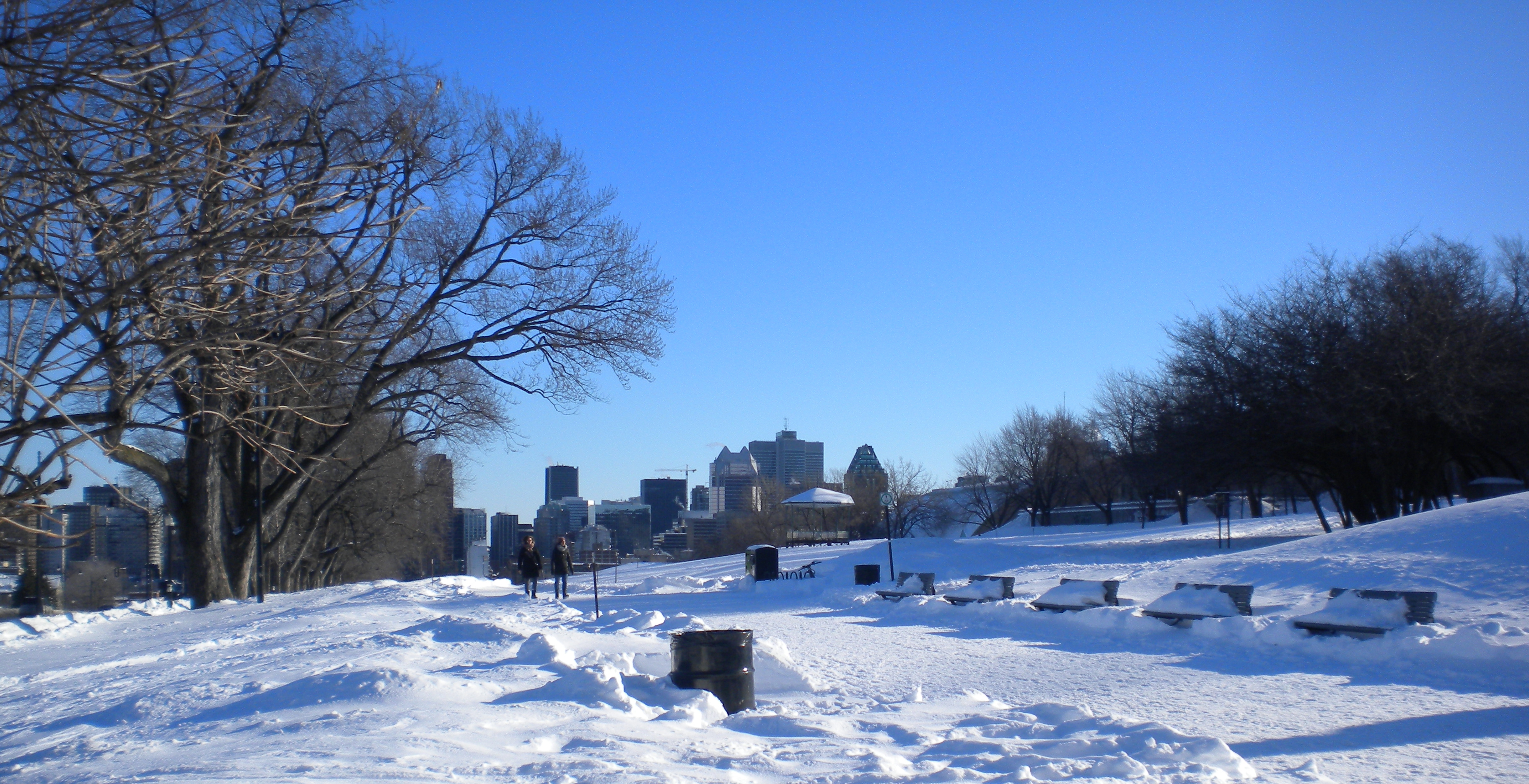 MontrealHivernalcroped